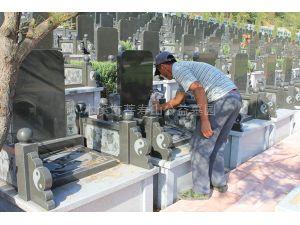 墓碑维护3