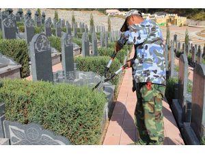 墓碑维护2